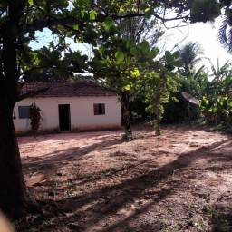Fazenda de 396 Hectares em Brasilandia de Minas  3500 por Hectare