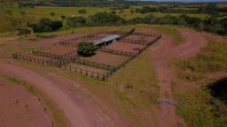 4800 hectares - Pecuária