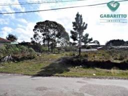CP 90591.003 - Excelente Terreno em São José dos Pinhais