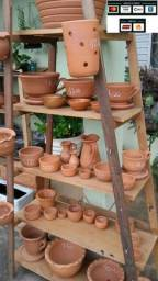 Vasos - plantas