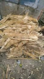Vendo bagaço de cana para adubo ou ração