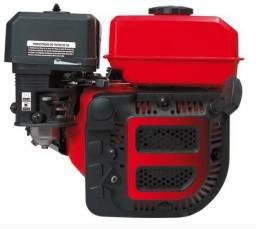 Motor Estacionário Gasolina 7hp P.Manual - Novo