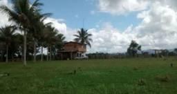 Arrendamento - Fazenda com 82 ha, Una-BA