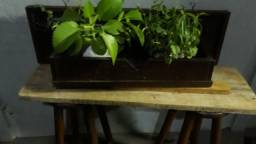 Título do anúncio: Peça Decorativa pra planta