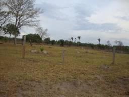 125 Alqueires. Pecuária Região Tangará Barra do Bugres-MT