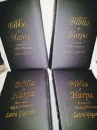 Biblia letra grande com harpa