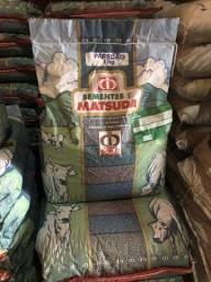 Sementes MG 12 paredão - MATSUDA 10kg