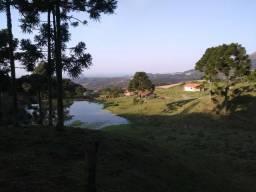 Lindo Sítio 20 hectares, casa, nascente de água