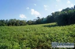 Área de terras com 11.15 hectares em Pinhal Alto - Nova Petrópolis / RS