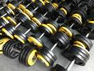 Dumbell 10 a 40 kg academia