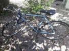 Bicicleta caloi 10 pintura original whats 99749098