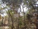 Sítios de Recreio da Lagoinha ( Chácaras )